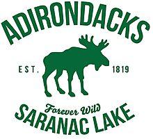 Cool Adirondacks Saranac Lake New York Scenic Beauty Moose Nature T-Shirt Photographic Print
