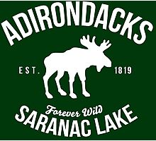 Awesome Adirondacks Saranac Lake New York Scenic Beauty Moose Nature T-Shirt Photographic Print