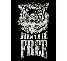Tiger - Born To Be Free! Photographic Print