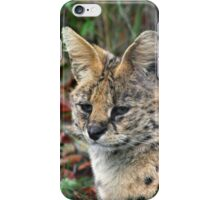 Serval iPhone Case/Skin
