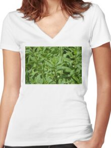Green Plant Women's Fitted V-Neck T-Shirt