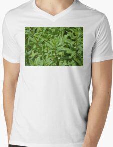 Green Plant Mens V-Neck T-Shirt