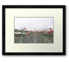 Poppy Ave Framed Print