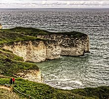 Chalk Cliffs at Flamborough Head by Tom Gomez