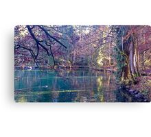 Secret lake in an automn forest Canvas Print