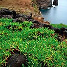 Coastal landscape in Azores by Gaspar Avila