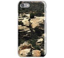 Hovenweep 22 iPhone Case/Skin