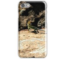 Hovenweep 25 iPhone Case/Skin