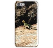Hovenweep 26 iPhone Case/Skin