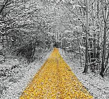 The golden path  by franceslewis