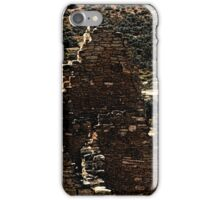 Hovenweep 36 iPhone Case/Skin