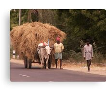 Carting Fodder, Gingee, Tamil Nadu, India Canvas Print