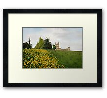 Wildflower meadows lead to Downton abbey Framed Print
