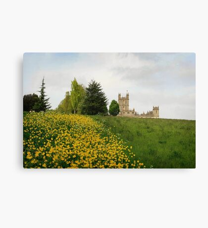 Wildflower meadows lead to Downton abbey Canvas Print