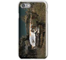Abandoned 1956 Cadillac iPhone Case/Skin