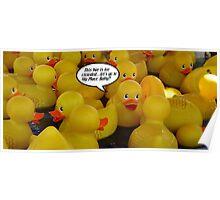 Ducks At A Singles Bar..sort of.... Poster