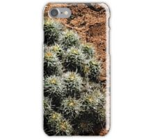 Hovenweep 53 iPhone Case/Skin