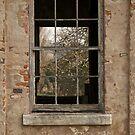 Window in window by brilightning