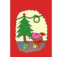 PiGgy is ready for Christmas! Photographic Print