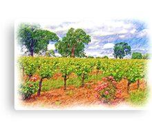Vineyard Roses Canvas Print