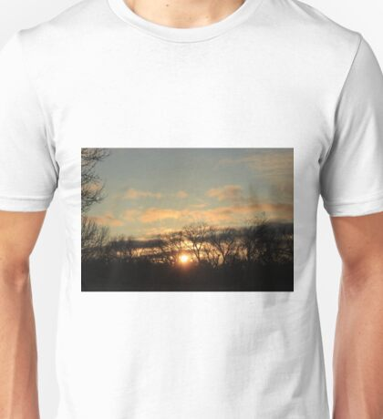 Kansas Golden Sky with tree silhouette's Unisex T-Shirt