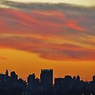 An evening downtown, New York City  by Alberto  DeJesus