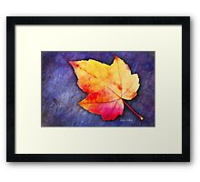 A Colorful Fall Memory Framed Print