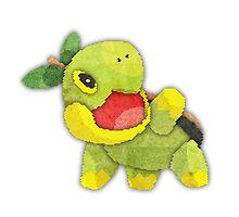 pokemon - turtwig by cavia