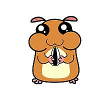 Cartoon Hamster Photographic Print