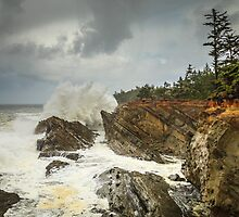 Fury On The Oregon Coast by James Eddy