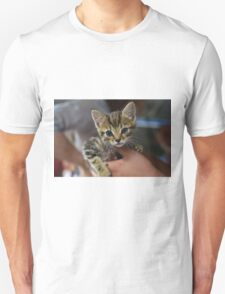 Kitten in the hand T-Shirt