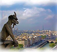 Gargoyle on Notre Dame by shutterbug941