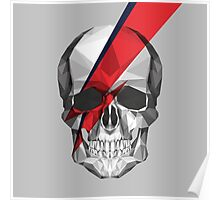 Ziggy Skulldust Poster
