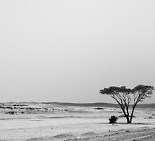 Loneliness by Omar Dakhane