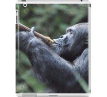 Chimpanzee ( Pan Troglodytes) iPad Case/Skin