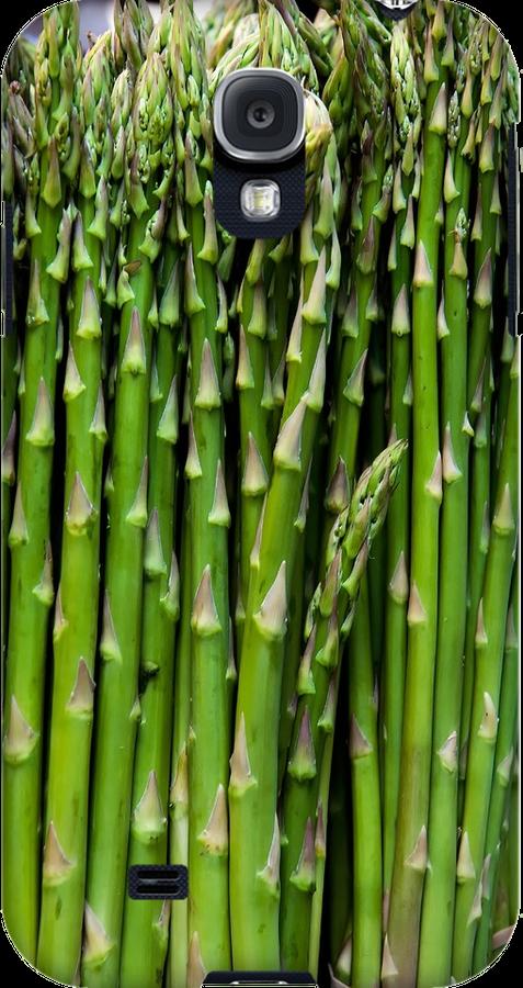 Asparagus by Eyal Nahmias