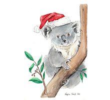 Koala Claus Photographic Print