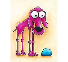 The Pink Dog and his ball Photographic Print