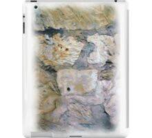 Alamo Bullet Holes iPad Case/Skin