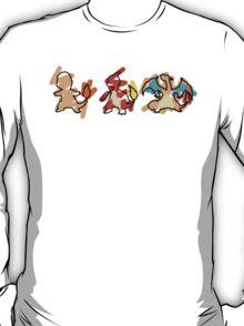 Charmander Evoloution T-Shirt
