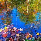 Reverse Autumn by MarianBendeth