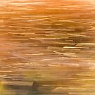 Abstract Cattails Series #2 by Thomas Young
