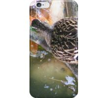 Feeding Duck iPhone Case/Skin