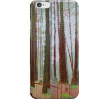 Terra Incognita iPhone Case/Skin