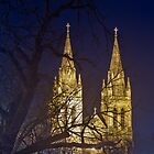 St Peter's Cathedral by pablosvista2