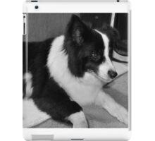 Jess, a damaged dog. iPad Case/Skin