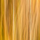 Abstract Cattails Series #5 by Thomas Young