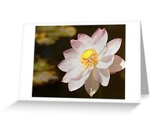 0236 Japanese Lotus Flower Greeting Card