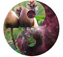 Astral Shrooms Photographic Print