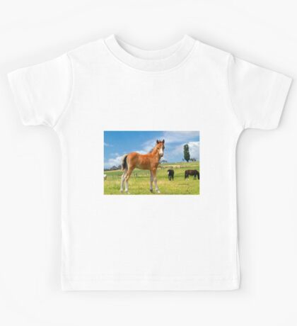 Welsh Mountain Foal Kids Tee